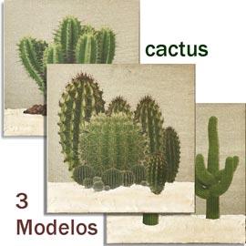 tienda de cuadros cactus