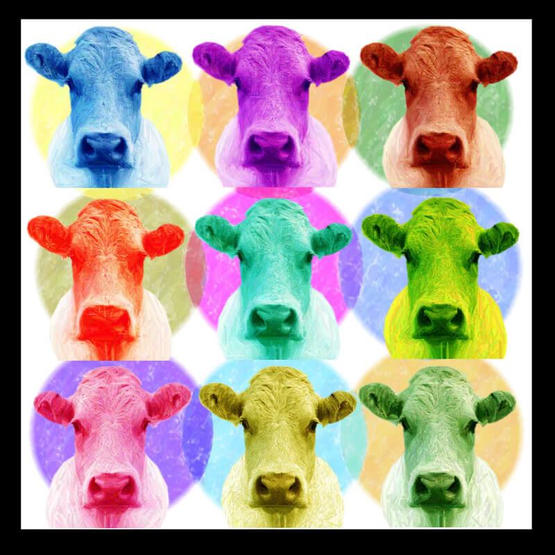 Estudio delier cuadro pop art vaca 130x130 - Cuadros de vacas ...