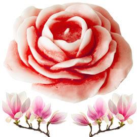 velas de rosas