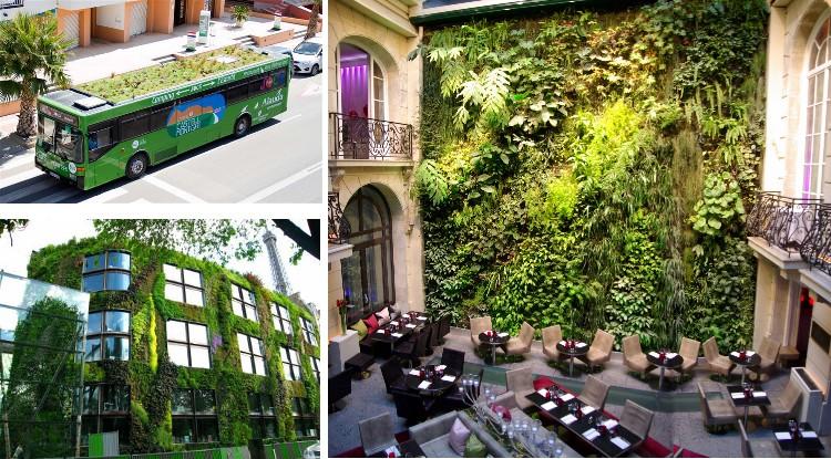Jardines verticales texturas vegetales ecol gicas for Edificios con jardines verticales