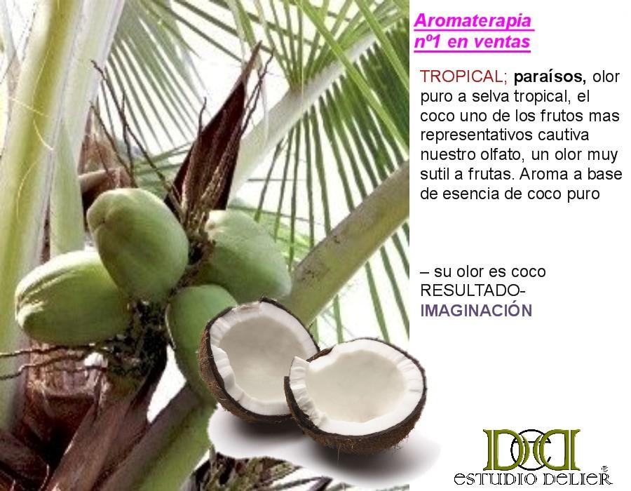 aromas a coco