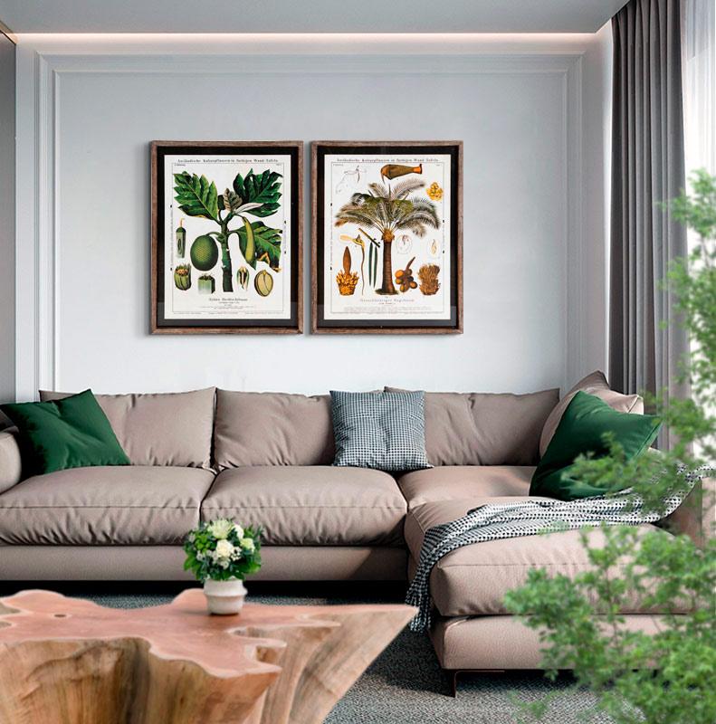 cuadros de plantas botanicos