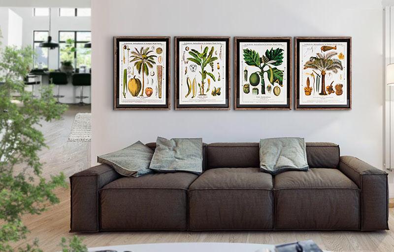 cuadros decorativos plantas