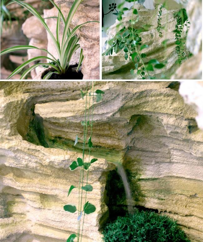 El jard n de los sentidos cienpozuelos - El jardin de los sentidos ...
