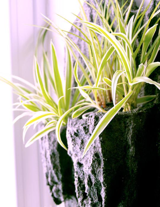 comprar jardines verticales online